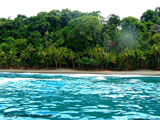Beach and Rainforest
